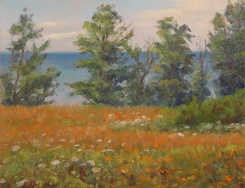 Rick Muto, EMBRACING THE LANDSCAPE